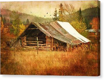 Was Once A Dream Canvas Print by Mary Timman