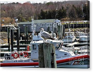 Boats In Water Canvas Print - Watchful by Extrospection Art