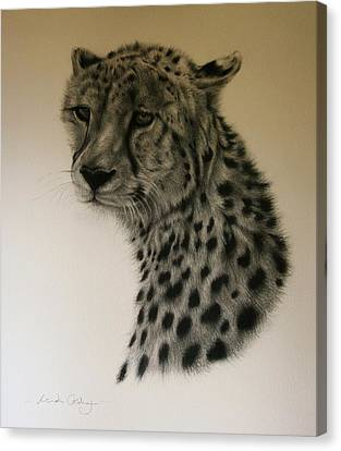Watchful Canvas Print by Lucinda Coldrey