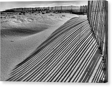 Watching Shadows Bw Canvas Print by JC Findley