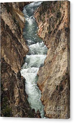 Water And Rock Canvas Print by Living Color Photography Lorraine Lynch