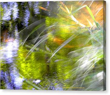 Canvas Print featuring the photograph Water And Wind by Alfonso Garcia