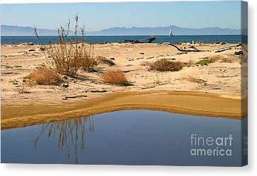 Water By The Ocean Canvas Print