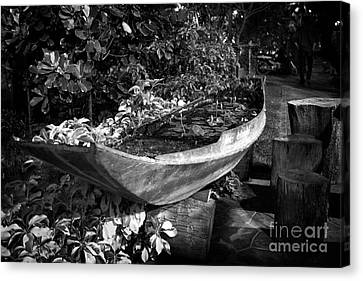Canvas Print featuring the photograph Water Canoe by Thanh Tran