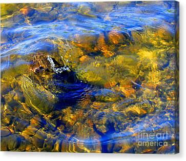 Water Circle Canvas Print