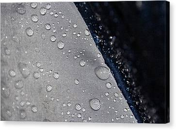 Canvas Print featuring the photograph Water Droplets by Ester  Rogers