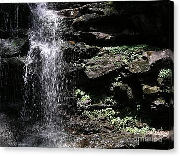 Water Figure Waterfall Canvas Print