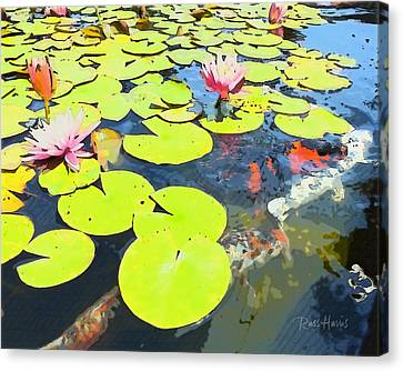 Water Lilies And Koi Canvas Print by Russ Harris