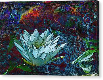 Water Lily Abstract Canvas Print by Phyllis Denton