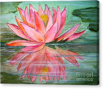 Water Lily Canvas Print by Carol Grimes