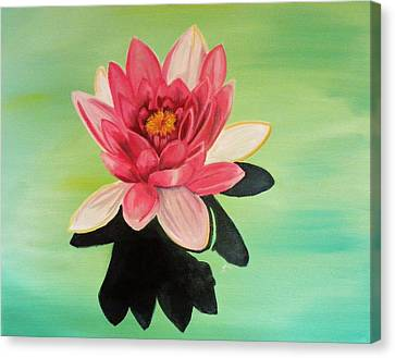 Water Lily Canvas Print by Laura Evans