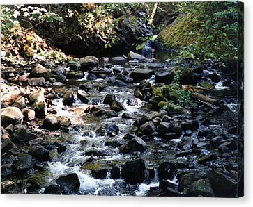 Canvas Print featuring the photograph Water Over Rocks by Maureen E Ritter