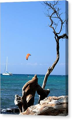 Water Sports In Hawaii 2 Canvas Print by Karen Nicholson