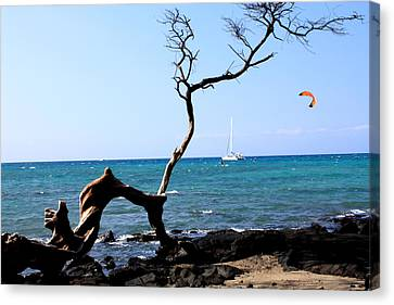 Water Sports In Hawaii Canvas Print by Karen Nicholson