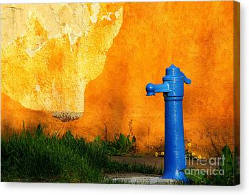 Water Well Canvas Print by Odon Czintos