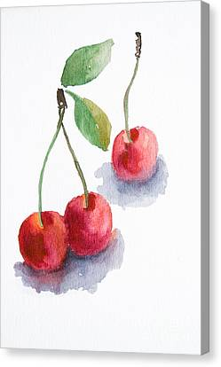 Watercolor Cherry  Canvas Print