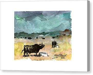 watercolour TORO VI Canvas Print