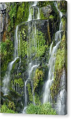 Waterfall At Columbia River Washington Canvas Print by Ted J Clutter and Photo Researchers