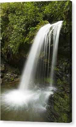 Waterfall At Springtime Canvas Print by Andrew Soundarajan