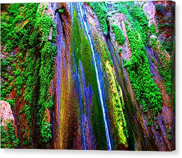 Waterfall  Canvas Print by Catherine Natalia  Roche