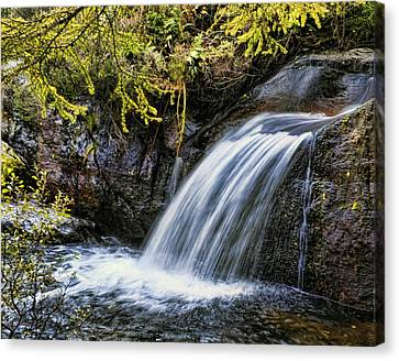 Canvas Print featuring the photograph Waterfall by Hugh Smith