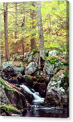 Waterfall II Canvas Print by HD Connelly