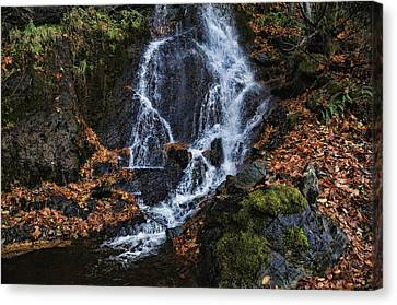 Waterfall Canvas Print by Lawrence Christopher