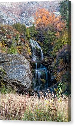 Waterfall Marion Creek Canvas Print by Gary Rose