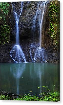 Canvas Print featuring the photograph Waterfall- Micoud- St Lucia by Chester Williams