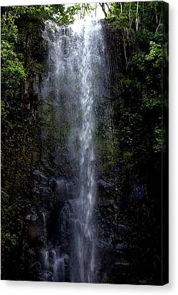 Waterfall Canvas Print by Luis and Paula Lopez