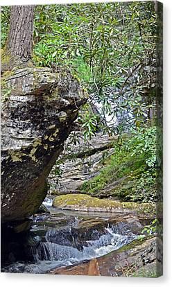 Waterfall Rock Canvas Print by Susan Leggett