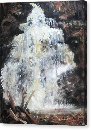 Waterfall Canvas Print by Sarah Farren