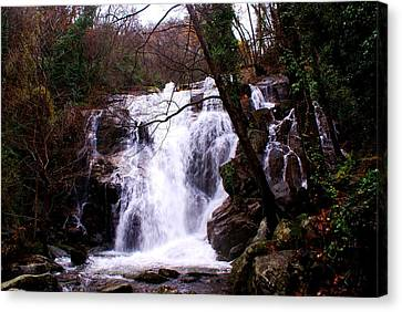Waterfall Spain Canvas Print by Luis and Paula Lopez