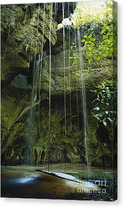 Waterfalls  Canvas Print by Jacques Jangoux and Photo Researchers