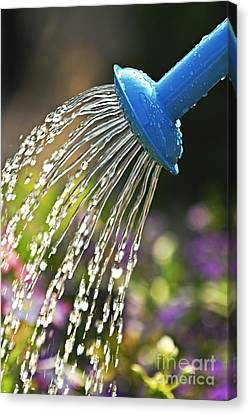 Watering Flowers Canvas Print