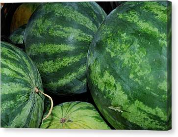 Canvas Print featuring the photograph Watermelon by Diane Lent
