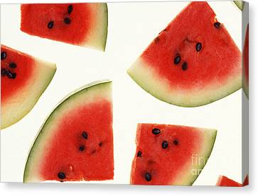 Watermelon Canvas Print by Photo Researchers