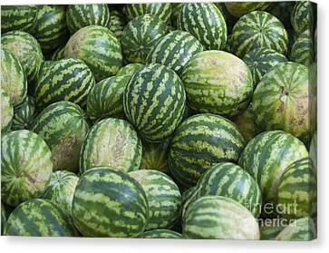 Canvas Print featuring the photograph Watermelons by Andrew  Michael