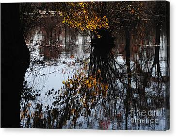 Canvas Print featuring the photograph Waterpainting by Tamera James