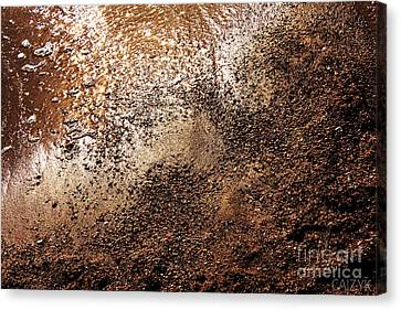 Watty8 Canvas Print by Cazyk Photography