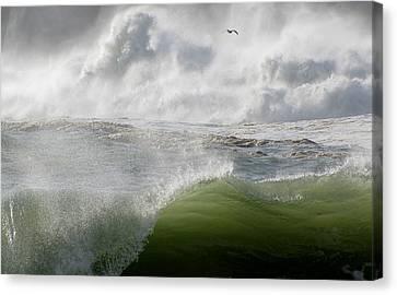 Wave Canvas Print by Barbara Walsh