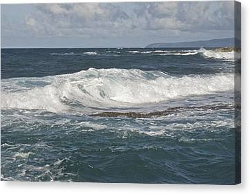 Waves Breaking 7952 Canvas Print by Michael Peychich