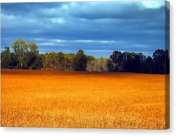 Waves Of Grain Canvas Print