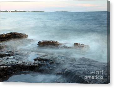 Waves On The Coast Canvas Print by Ted Kinsman