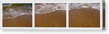 Waves Triptych Canvas Print by Michelle Calkins