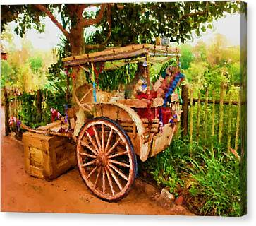 Way Of Life Canvas Print by Carmen Del Valle