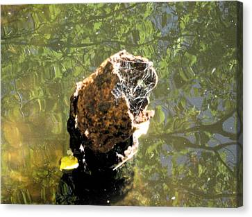 Canvas Print featuring the photograph We All Float Down Here by Bruce Carpenter