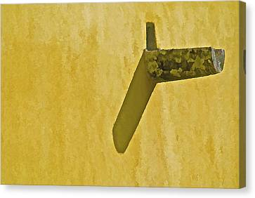 Weathered Carved Stone Down Spout Canvas Print by David Letts