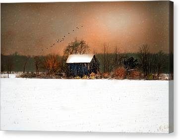 Canvas Print featuring the photograph Weathered by Mary Timman