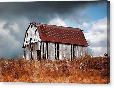 Canvas Print featuring the photograph Weathering The Storm by Renee Hardison